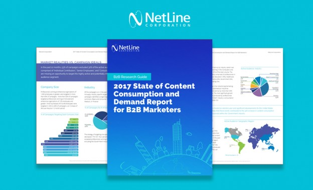 NetLine Research Study for B2B Marketers 2017