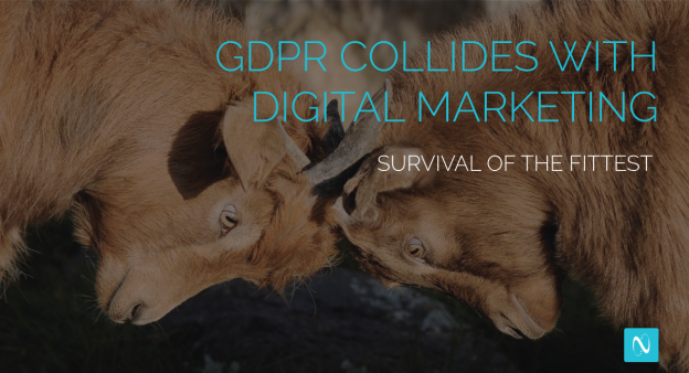GDPR and Consumer Privacy Regulations - NetLine