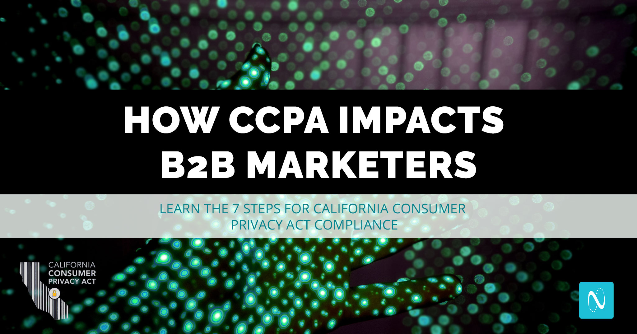 CCPA could impact your B2B business. Learn how and take these 7 steps to become compliant.