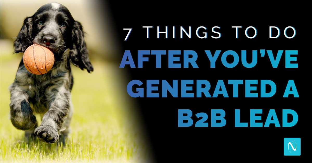 A dog with its ball is like generating a B2B lead: there's more work to do once you've got it.